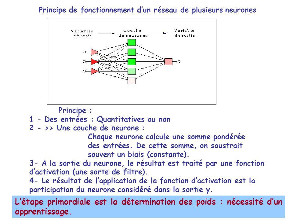 Principe : 1 - Des entrées : Quantitatives ou non 2 - >> Une couche de neurone : Chaque neurone calcule une somme pondérée des entrées. De cette somme