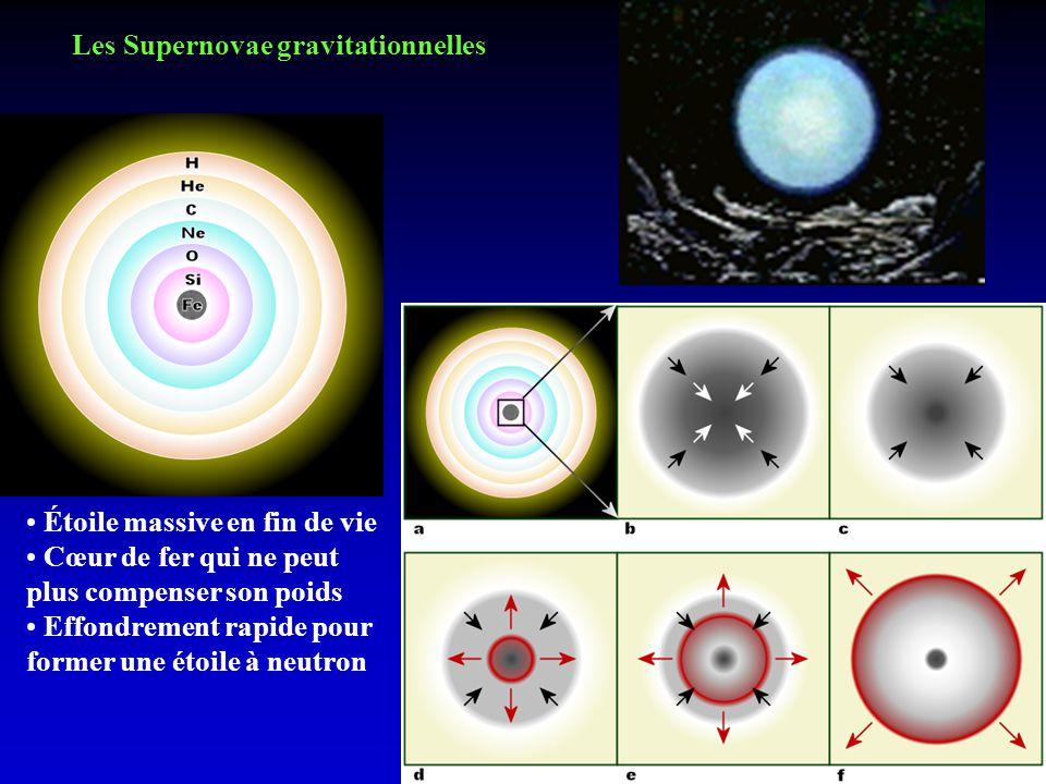 Les Supernovae gravitationnelles Étoile massive en fin de vie Cœur de fer qui ne peut plus compenser son poids Effondrement rapide pour former une éto