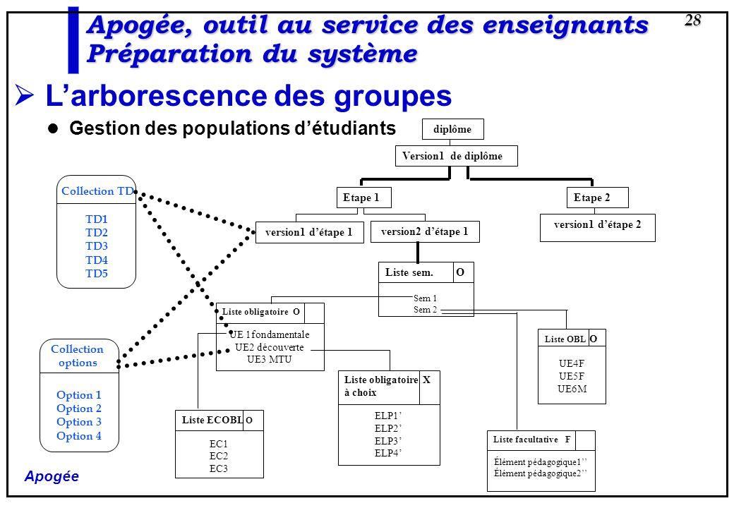 Apogée 28 Larborescence des groupes Gestion des populations détudiants diplôme Version1 de diplôme Etape 2 version1 détape 2 Etape 1 version1 détape 1