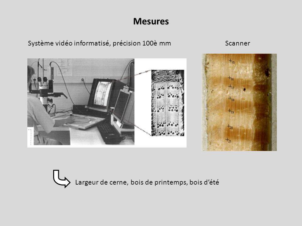 Mesures Système vidéo informatisé, précision 100è mmScanner Largeur de cerne, bois de printemps, bois dété