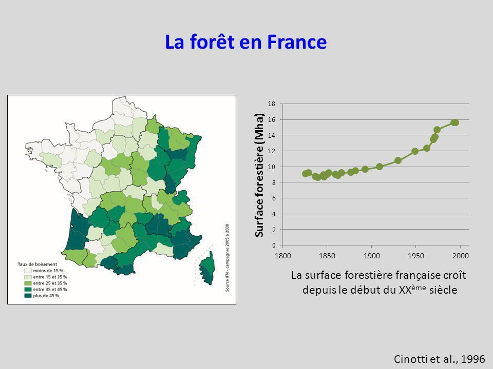 Cinotti et al., 1996 La forêt en France La surface forestière française croît depuis le début du XX ème siècle