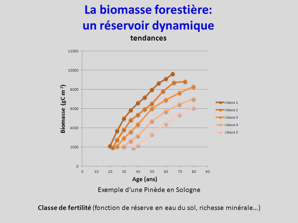 Exemple dune Pinède en Sologne Classe de fertilité (fonction de réserve en eau du sol, richesse minérale…) La biomasse forestière: un réservoir dynamique tendances