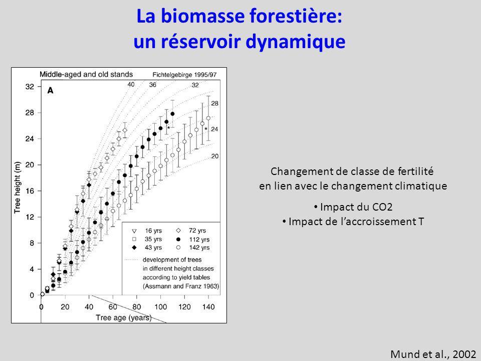 La biomasse forestière: un réservoir dynamique Changement de classe de fertilité en lien avec le changement climatique Impact du CO2 Impact de laccroissement T Mund et al., 2002