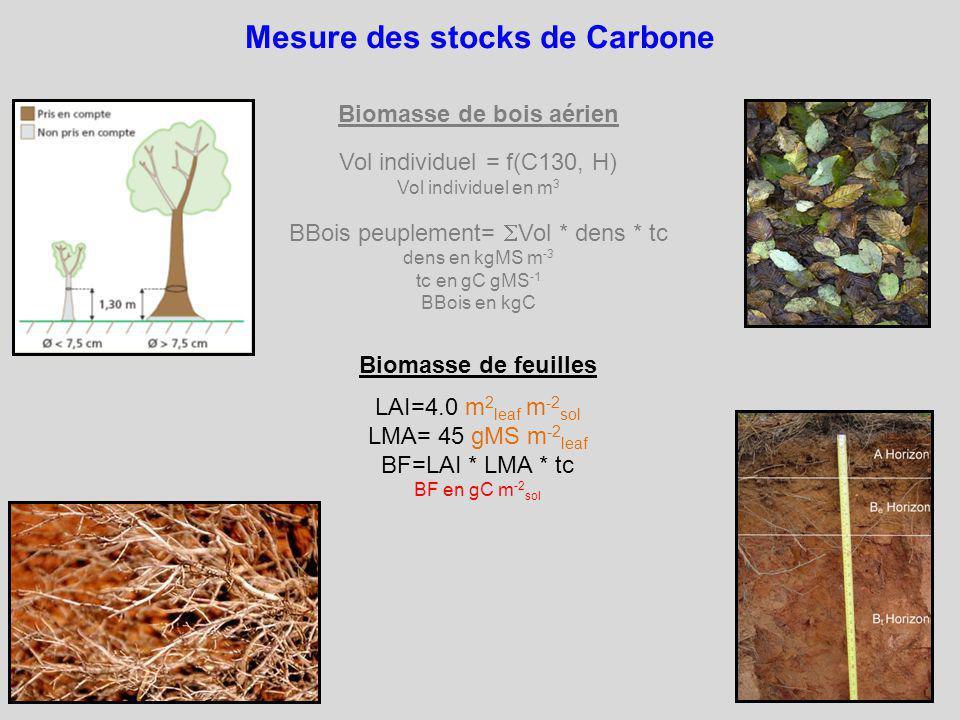 Mesure des stocks de Carbone Biomasse de feuilles LAI=4.0 m 2 leaf m -2 sol LMA= 45 gMS m -2 leaf BF=LAI * LMA * tc BF en gC m -2 sol Biomasse de bois aérien Vol individuel = f(C130, H) Vol individuel en m 3 BBois peuplement= Vol * dens * tc dens en kgMS m -3 tc en gC gMS -1 BBois en kgC