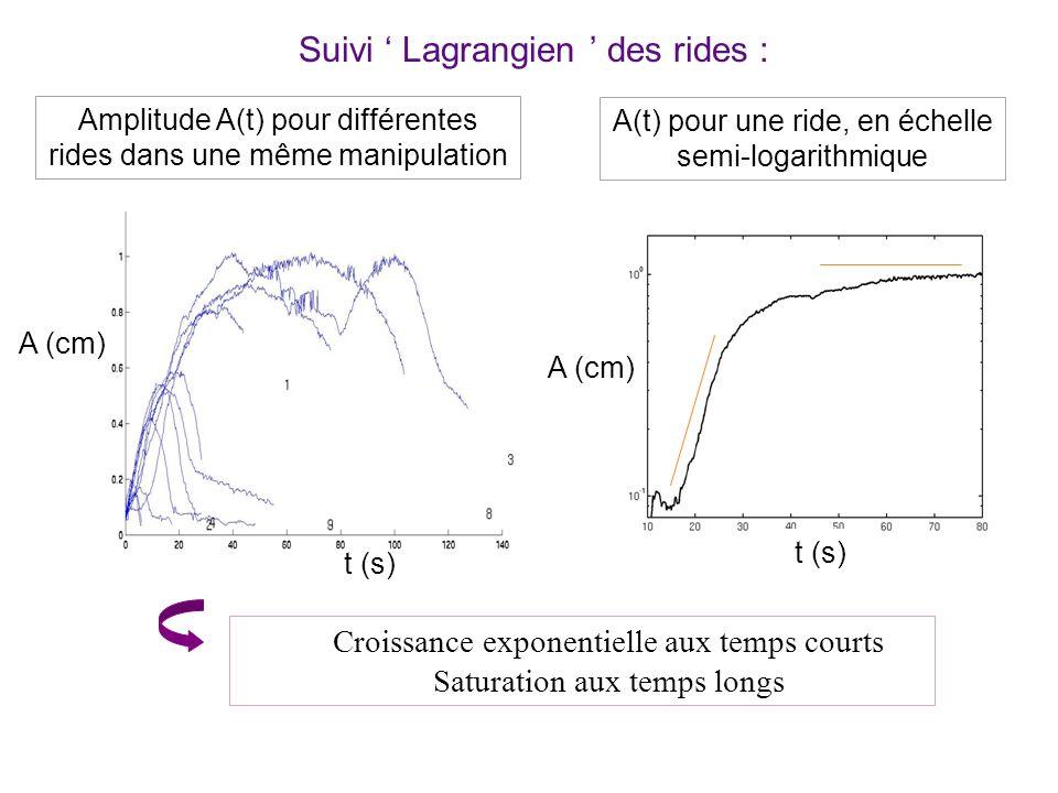 Suivi Lagrangien des rides : Amplitude A(t) pour différentes rides dans une même manipulation A(t) pour une ride, en échelle semi-logarithmique Croissance exponentielle aux temps courts Saturation aux temps longs A (cm) t (s) A (cm)