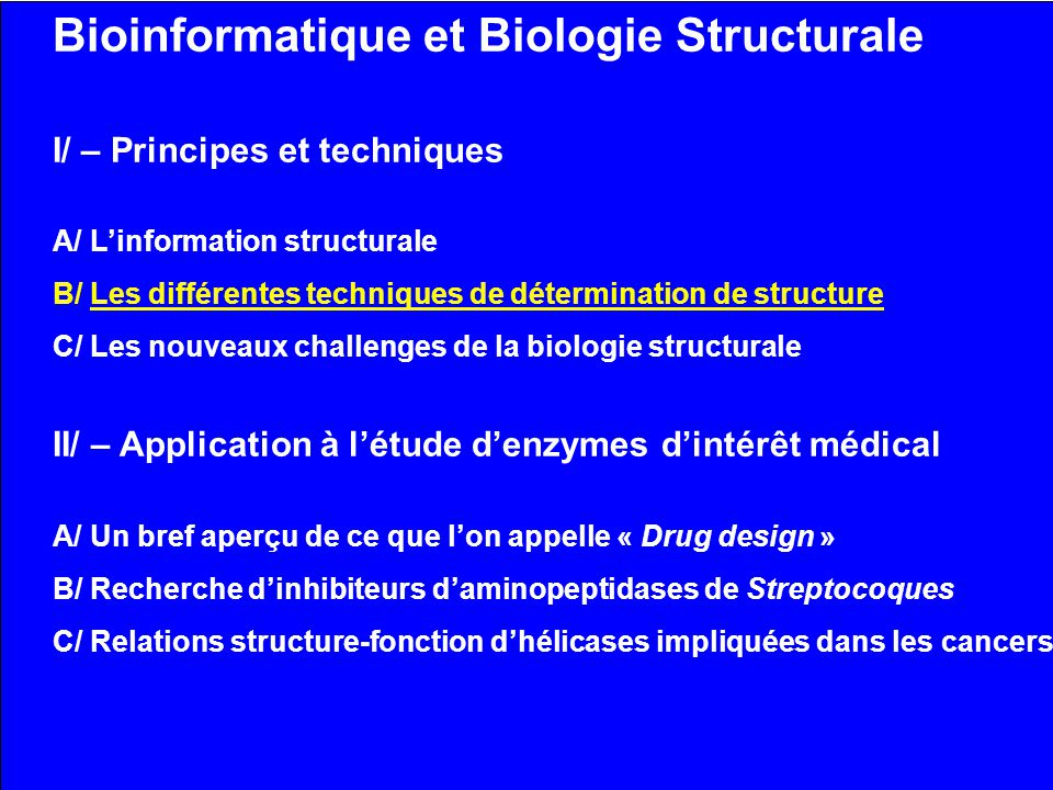 Bioinformatique et Biologie Structurale I/ – Principes et techniques A/ Linformation structurale B/ Les différentes techniques de détermination de structure C/ Les nouveaux challenges de la biologie structurale II/ – Application à létude denzymes dintérêt médical A/ Un bref aperçu de ce que lon appelle « Drug design » B/ Recherche dinhibiteurs daminopeptidases de Streptocoques C/ Relations structure-fonction dhélicases impliquées dans les cancers