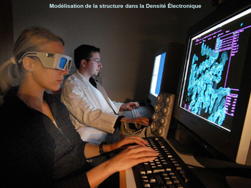 Modélisation de la structure dans la Densité Électronique