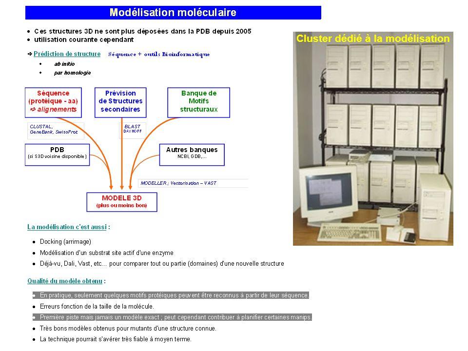 Cluster dédié à la modélisation