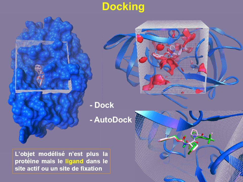 Docking Lobjet modélisé nest plus la protéine mais le ligand dans le site actif ou un site de fixation - Dock - AutoDock