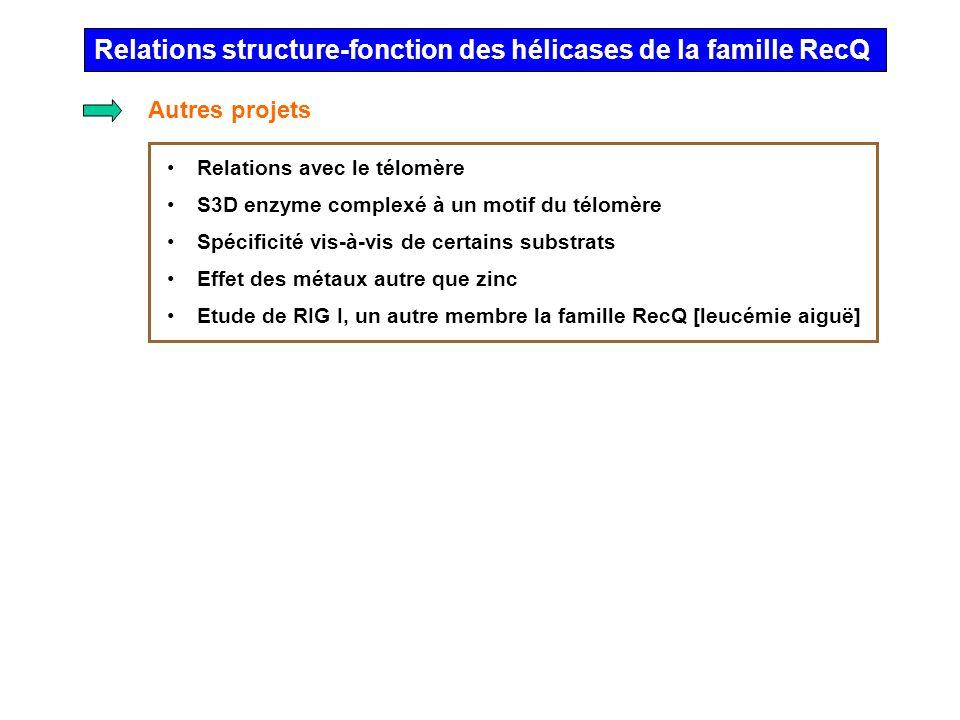 Relations structure-fonction des hélicases de la famille RecQ Relations avec le télomère S3D enzyme complexé à un motif du télomère Spécificité vis-à-