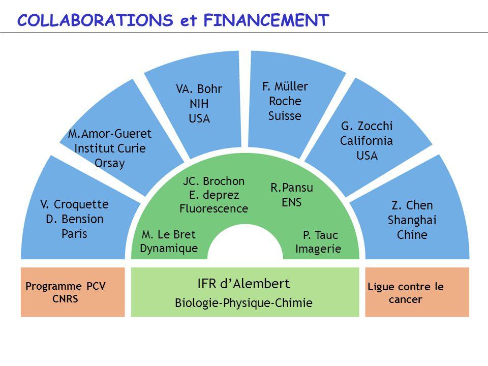 IFR dAlembert Biologie-Physique-Chimie Ligue contre le cancer JC. Brochon E. deprez Fluorescence P. Tauc Imagerie M. Le Bret Dynamique V. Croquette D.