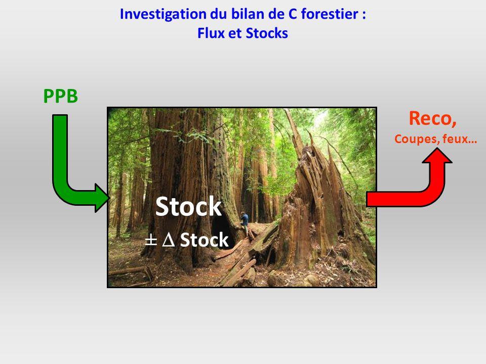 Investigation du bilan de C forestier : Flux et Stocks PPB Stock Reco, Coupes, feux… ± Stock
