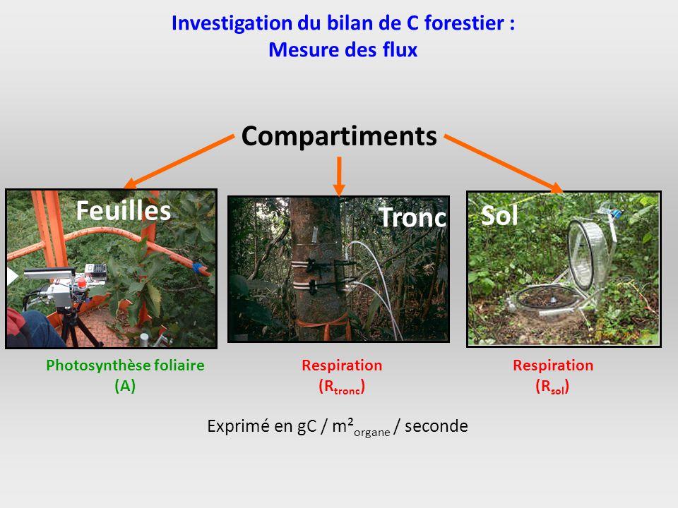 Investigation du bilan de C forestier : Mesure des flux Compartiments Feuilles Tronc Sol Photosynthèse foliaire (A) Respiration (R tronc ) Respiration