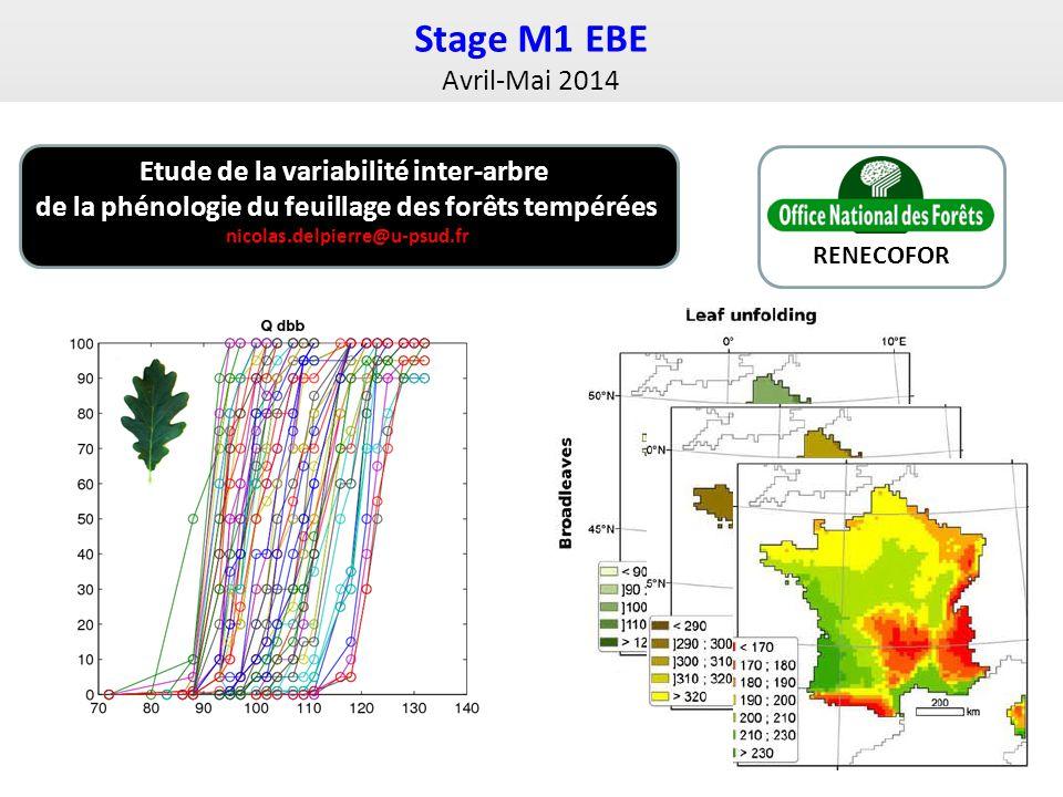 Stage M1 EBE Avril-Mai 2014 RENECOFOR Etude de la variabilité inter-arbre de la phénologie du feuillage des forêts tempérées nicolas.delpierre@u-psud.