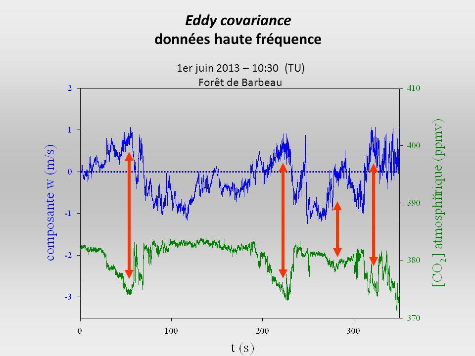 1er juin 2013 – 10:30 (TU) Forêt de Barbeau Eddy covariance données haute fréquence