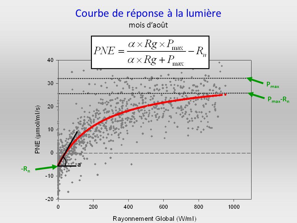 -R n a P max P max -R n Courbe de réponse à la lumière mois daoût