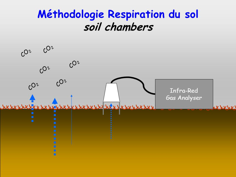 Méthodologie Respiration du sol soil chambers Infra-Red Gas Analyser CO 2