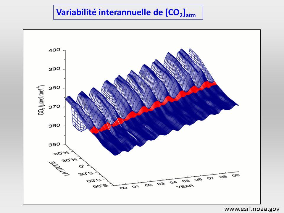 Variabilité interannuelle de [CO 2 ] atm www.esrl.noaa.gov