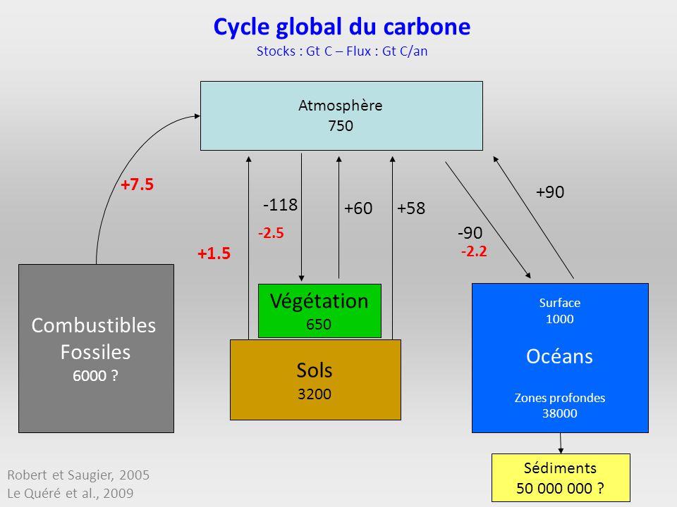 Atmosphère 750 Combustibles Fossiles 6000 ? Végétation 650 Surface 1000 Océans Zones profondes 38000 Sédiments 50 000 000 ? +7.5 +1.5 -118 +60+58 +90