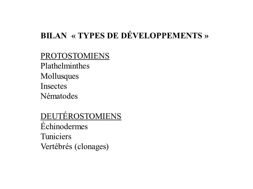 BILAN « TYPES DE DÉVELOPPEMENTS » PROTOSTOMIENS Plathelminthes Mollusques Insectes Nématodes DEUTÉROSTOMIENS Échinodermes Tuniciers Vertébrés (clonages)