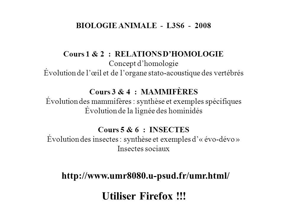 BIOLOGIE ANIMALE - L3S6 - 2008 Cours 1 & 2 : RELATIONS DHOMOLOGIE Concept dhomologie Évolution de lœil et de lorgane stato-acoustique des vertébrés Co