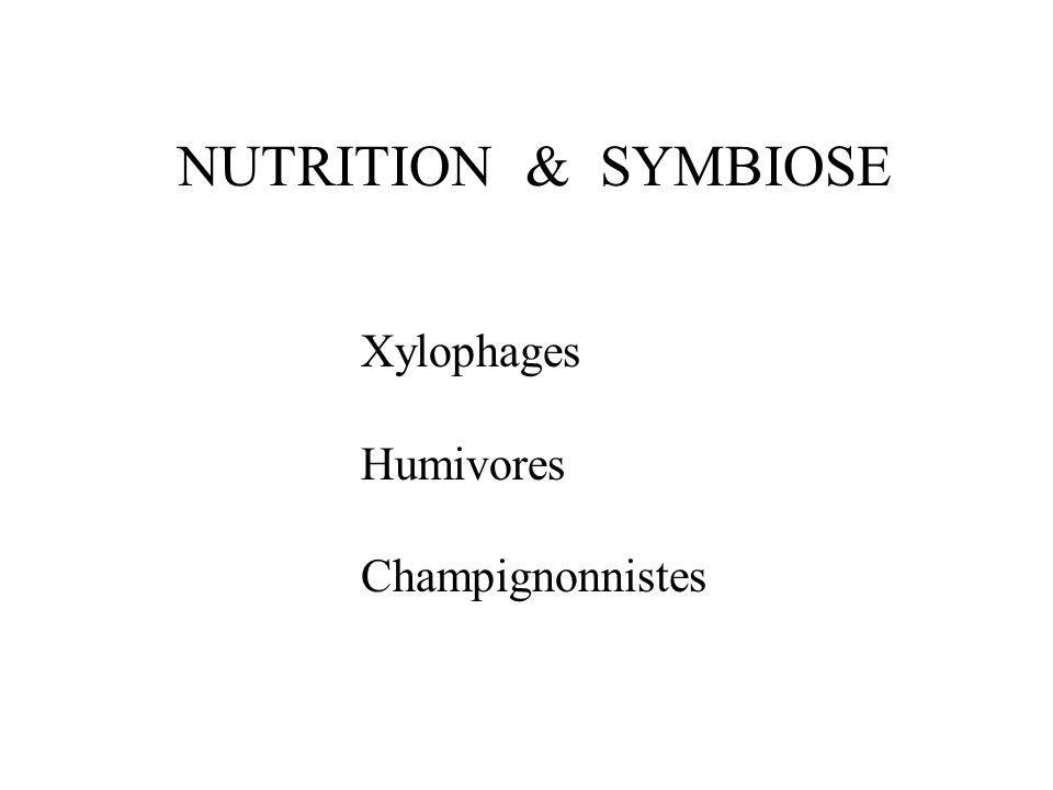 NUTRITION & SYMBIOSE Xylophages Humivores Champignonnistes