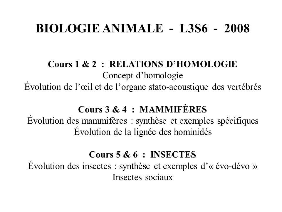 BIOLOGIE ANIMALE - L3S6 - 2008 Cours 1 & 2 : RELATIONS DHOMOLOGIE Concept dhomologie Évolution de lœil et de lorgane stato-acoustique des vertébrés Cours 3 & 4 : MAMMIFÈRES Évolution des mammifères : synthèse et exemples spécifiques Évolution de la lignée des hominidés Cours 5 & 6 : INSECTES Évolution des insectes : synthèse et exemples d« évo-dévo » Insectes sociaux