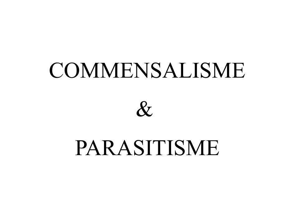 COMMENSALISME & PARASITISME