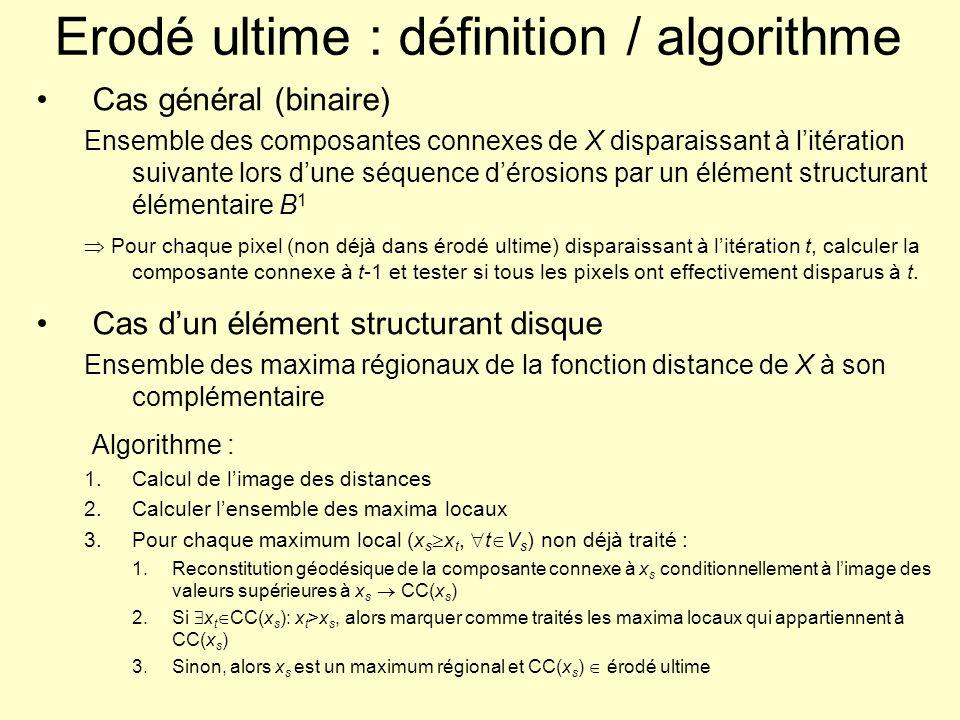 Erodé ultime : définition / algorithme Cas général (binaire) Ensemble des composantes connexes de X disparaissant à litération suivante lors dune séqu