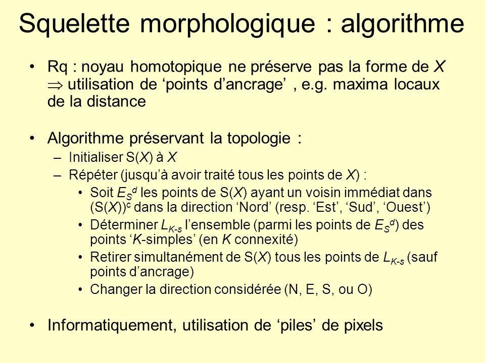 Squelette morphologique : algorithme Rq : noyau homotopique ne préserve pas la forme de X utilisation de points dancrage, e.g. maxima locaux de la dis