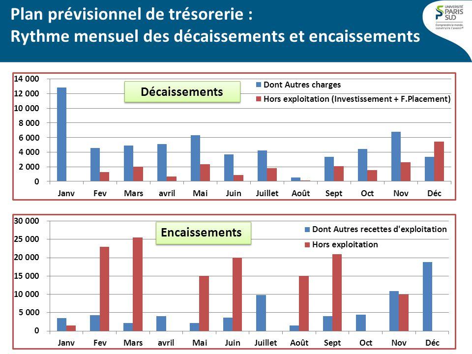 Plan prévisionnel de trésorerie : Rythme mensuel des décaissements et encaissements Décaissements