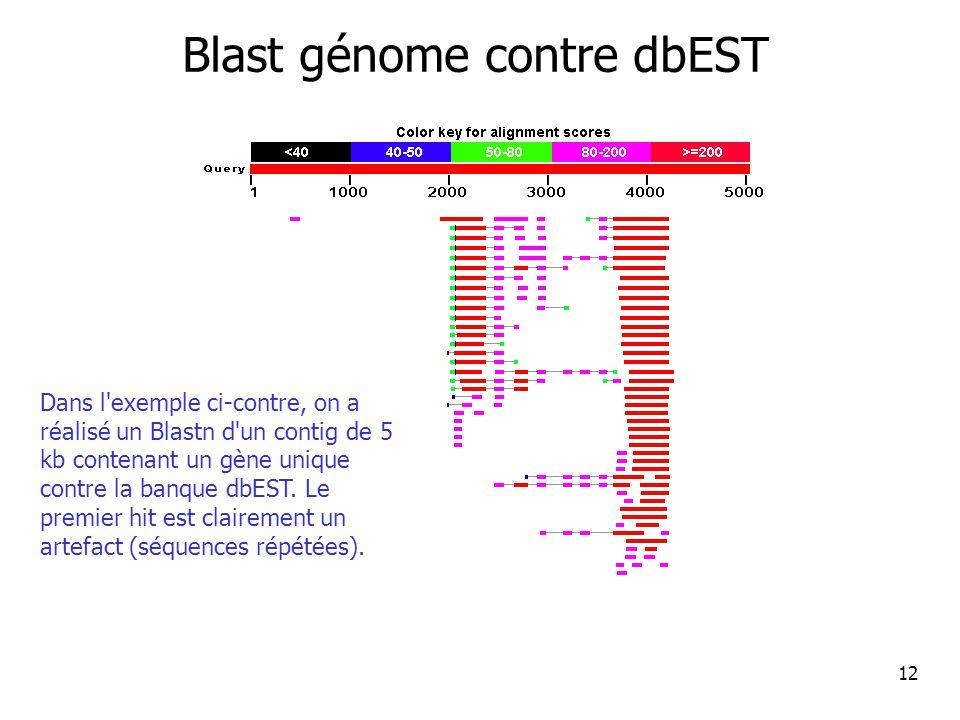 12 Blast génome contre dbEST Dans l exemple ci-contre, on a réalisé un Blastn d un contig de 5 kb contenant un gène unique contre la banque dbEST.