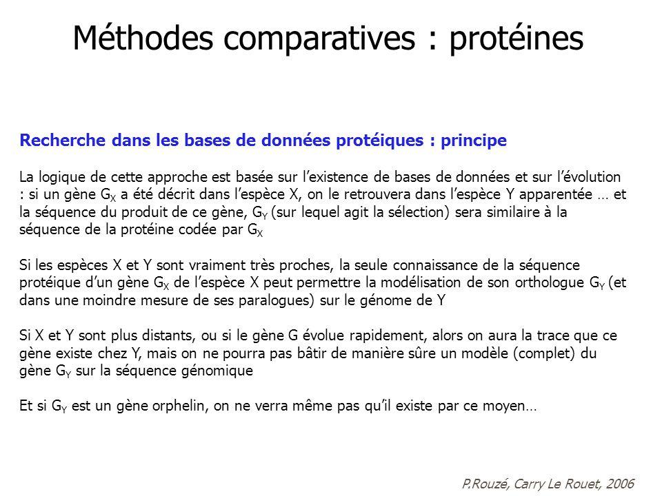 Recherche dans les bases de données protéiques : principe La logique de cette approche est basée sur lexistence de bases de données et sur lévolution : si un gène G X a été décrit dans lespèce X, on le retrouvera dans lespèce Y apparentée … et la séquence du produit de ce gène, G Y (sur lequel agit la sélection) sera similaire à la séquence de la protéine codée par G X Si les espèces X et Y sont vraiment très proches, la seule connaissance de la séquence protéique dun gène G X de lespèce X peut permettre la modélisation de son orthologue G Y (et dans une moindre mesure de ses paralogues) sur le génome de Y Si X et Y sont plus distants, ou si le gène G évolue rapidement, alors on aura la trace que ce gène existe chez Y, mais on ne pourra pas bâtir de manière sûre un modèle (complet) du gène G Y sur la séquence génomique Et si G Y est un gène orphelin, on ne verra même pas quil existe par ce moyen… Méthodes comparatives : protéines P.Rouzé, Carry Le Rouet, 2006
