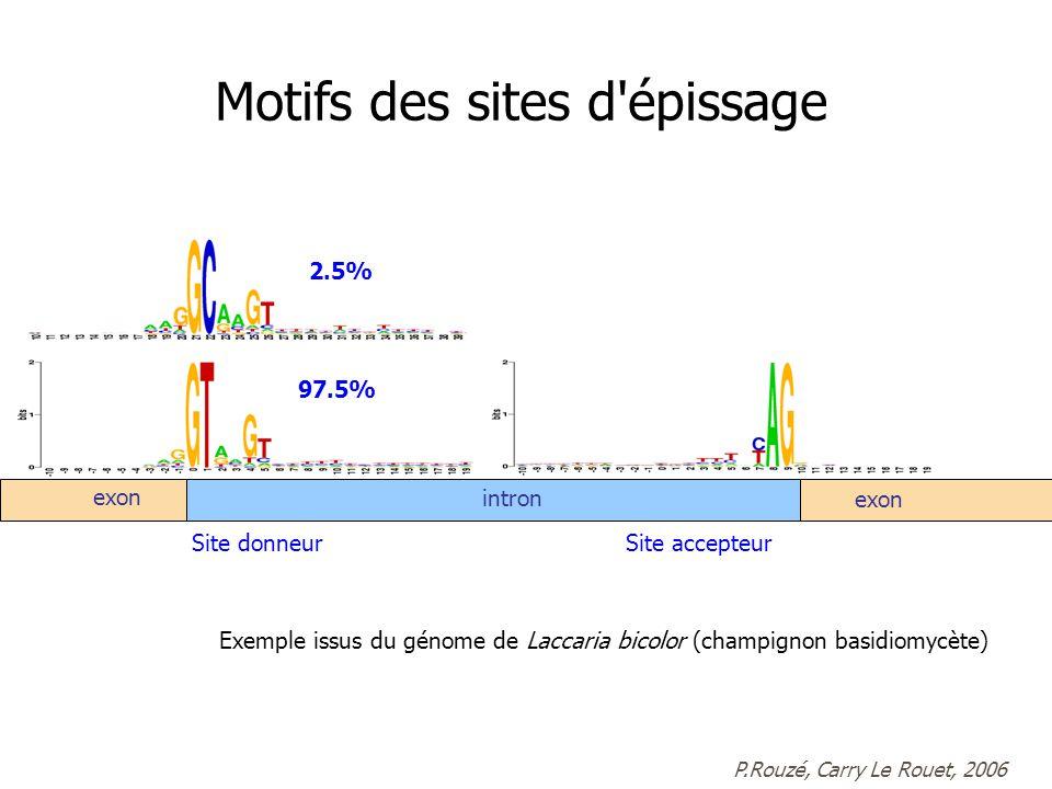 exon intron exon 97.5% 2.5% Site accepteurSite donneur P.Rouzé, Carry Le Rouet, 2006 Exemple issus du génome de Laccaria bicolor (champignon basidiomycète) Motifs des sites d épissage