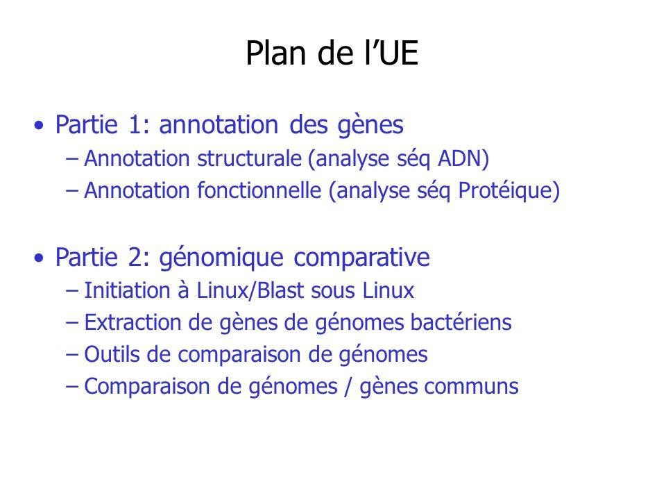 Plan de lUE Partie 1: annotation des gènes –Annotation structurale (analyse séq ADN) –Annotation fonctionnelle (analyse séq Protéique) Partie 2: génomique comparative –Initiation à Linux/Blast sous Linux –Extraction de gènes de génomes bactériens –Outils de comparaison de génomes –Comparaison de génomes / gènes communs