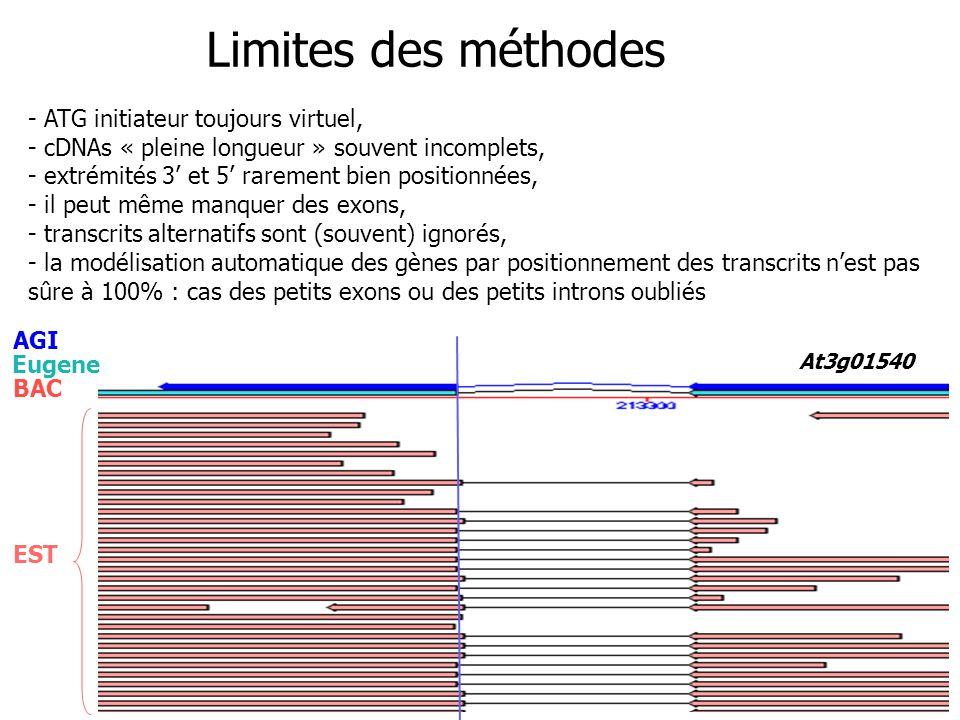 At3g01540 EST AGI BAC Eugene Limites des méthodes - ATG initiateur toujours virtuel, - cDNAs « pleine longueur » souvent incomplets, - extrémités 3 et 5 rarement bien positionnées, - il peut même manquer des exons, - transcrits alternatifs sont (souvent) ignorés, - la modélisation automatique des gènes par positionnement des transcrits nest pas sûre à 100% : cas des petits exons ou des petits introns oubliés