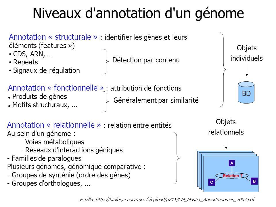 En pratique, le plus souvent, positionner les gènes et leurs produits : transcrits, protéines..