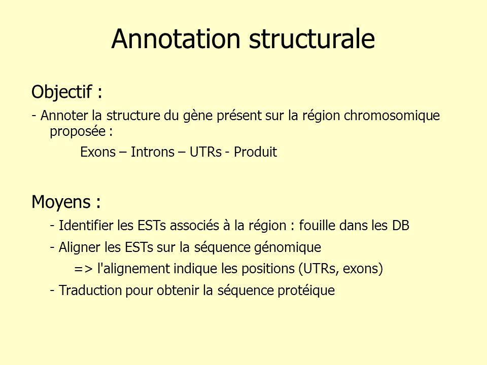 Annotation structurale Objectif : - Annoter la structure du gène présent sur la région chromosomique proposée : Exons – Introns – UTRs - Produit Moyens : - Identifier les ESTs associés à la région : fouille dans les DB - Aligner les ESTs sur la séquence génomique => l alignement indique les positions (UTRs, exons) - Traduction pour obtenir la séquence protéique