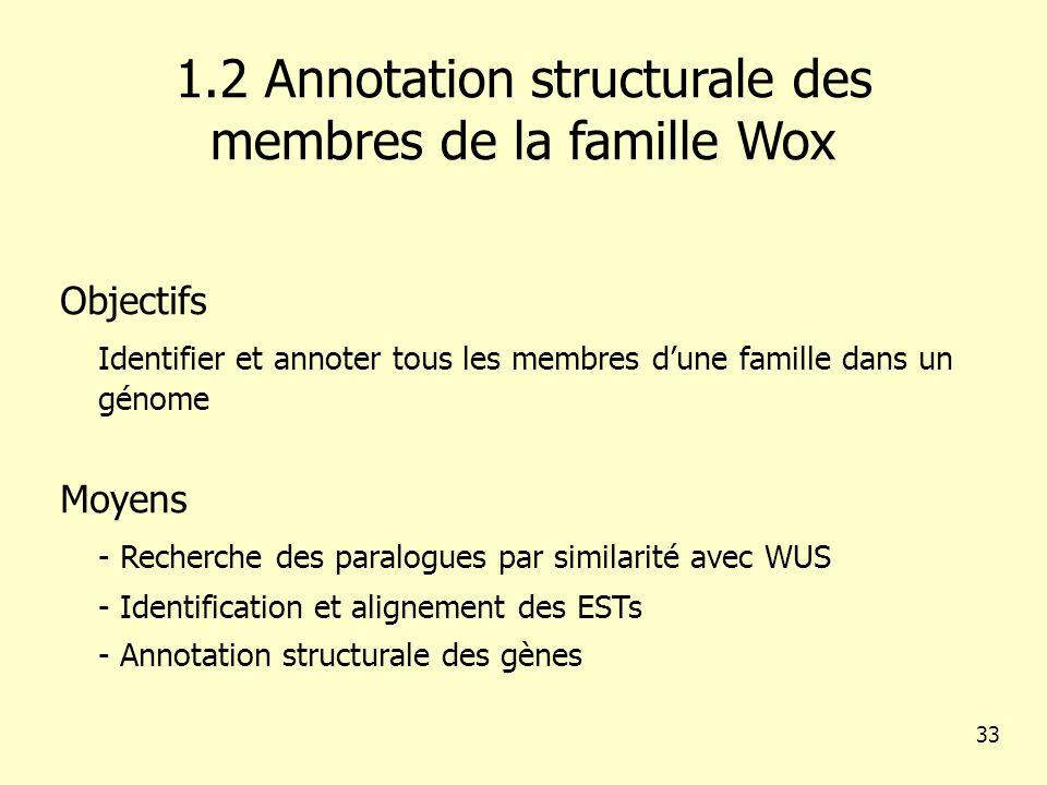 1.2 Annotation structurale des membres de la famille Wox Objectifs Identifier et annoter tous les membres dune famille dans un génome Moyens - Recherche des paralogues par similarité avec WUS - Identification et alignement des ESTs - Annotation structurale des gènes 33