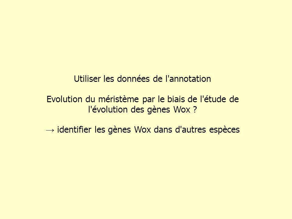 Utiliser les données de l annotation Evolution du méristème par le biais de l étude de l évolution des gènes Wox .