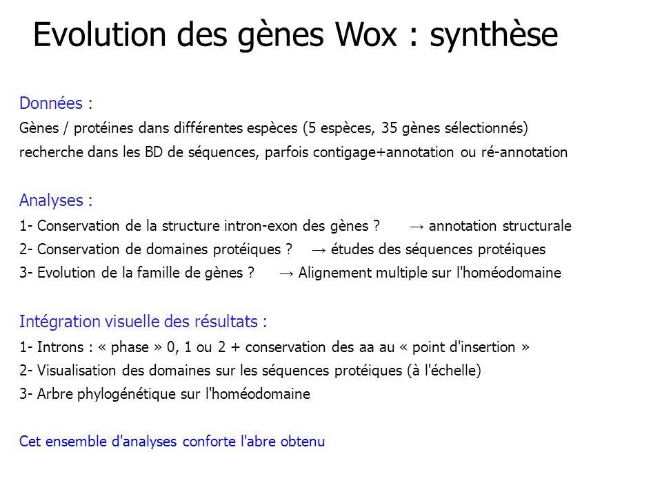 Données : Gènes / protéines dans différentes espèces (5 espèces, 35 gènes sélectionnés) recherche dans les BD de séquences, parfois contigage+annotation ou ré-annotation Analyses : 1- Conservation de la structure intron-exon des gènes .