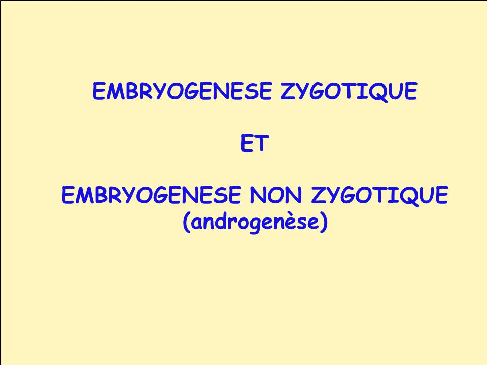 EMBRYOGENESE ZYGOTIQUE ET EMBRYOGENESE NON ZYGOTIQUE (androgenèse)