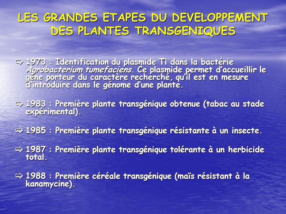 LES GRANDES ETAPES DU DEVELOPPEMENT DES PLANTES TRANSGENIQUES 1973 : Identification du plasmide Ti dans la bactérie Agrobacterium tumefaciens. Ce plas