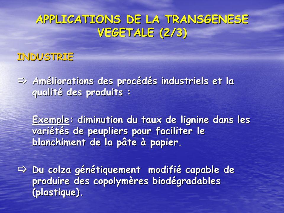 APPLICATIONS DE LA TRANSGENESE VEGETALE (2/3) INDUSTRIE Améliorations des procédés industriels et la qualité des produits : Améliorations des procédés