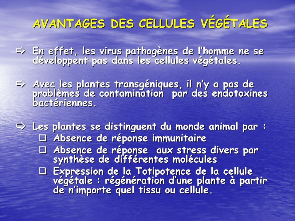 AVANTAGES DES CELLULES VÉGÉTALES En effet, les virus pathogènes de lhomme ne se développent pas dans les cellules végétales. En effet, les virus patho