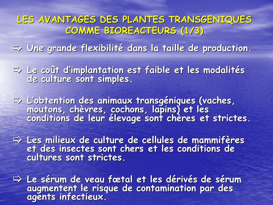 LES AVANTAGES DES PLANTES TRANSGENIQUES COMME BIOREACTEURS (1/3) Une grande flexibilité dans la taille de production. Une grande flexibilité dans la t