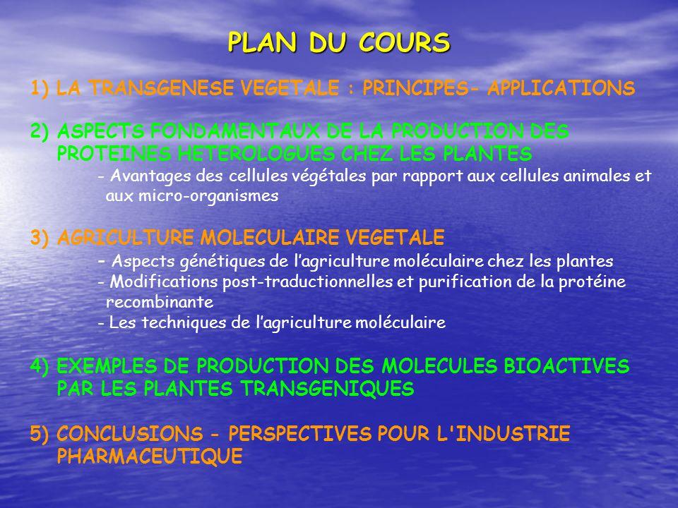 1) LA TRANSGENESE VEGETALE : PRINCIPES- APPLICATIONS 2) ASPECTS FONDAMENTAUX DE LA PRODUCTION DES PROTEINES HETEROLOGUES CHEZ LES PLANTES - Avantages