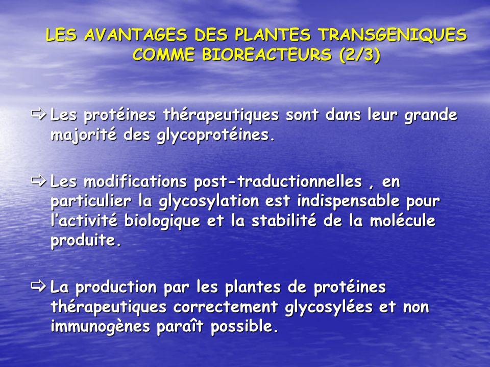 LES AVANTAGES DES PLANTES TRANSGENIQUES COMME BIOREACTEURS (2/3) Les protéines thérapeutiques sont dans leur grande majorité des glycoprotéines. Les p