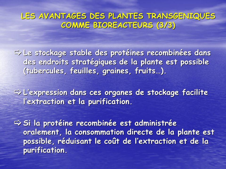 LES AVANTAGES DES PLANTES TRANSGENIQUES COMME BIOREACTEURS (3/3) Le stockage stable des protéines recombinées dans des endroits stratégiques de la pla