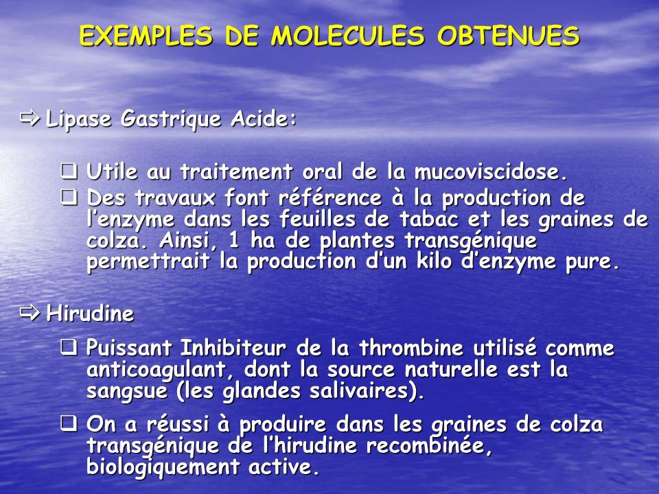 EXEMPLES DE MOLECULES OBTENUES Lipase Gastrique Acide: Lipase Gastrique Acide: Utile au traitement oral de la mucoviscidose. Utile au traitement oral
